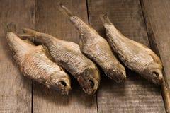 Fyra torkade fiskar royaltyfri foto