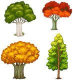 Fyra träd med olika färger Royaltyfria Bilder