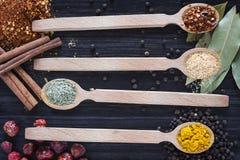Fyra träskedar med olika kryddor royaltyfri foto