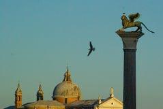 Fyrkant för St Mark ` s: himlen och seagullsna Arkivbild