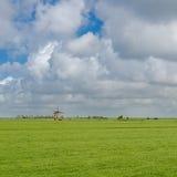 Fyrkantig bild av ett typisk holländskt landskap arkivbild