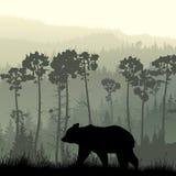 Fyrkantig illustration av björnen på den gräs- backen royaltyfri illustrationer