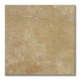 fyrkantig tegelplatta för golv Fotografering för Bildbyråer
