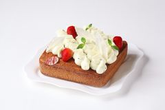 Fyrkantiga Basil Sponge Cake Royaltyfri Foto
