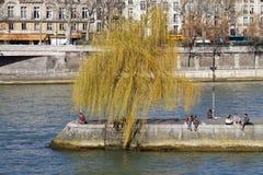 Fyrkantiga du Vert Galant och Seine River arkivfoton