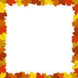 Fyrkantiga färgrika Autumn Maple Leaves Frame Isolated på vit Royaltyfri Bild