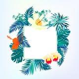 Fyrkantigt kort med den tropiska dekoren vektor illustrationer