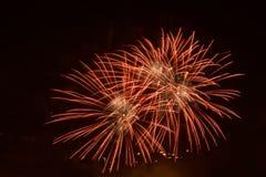Fyrverkerier i nattskyen Royaltyfri Foto