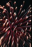 Fyrverkerier på 4th Juli arkivfoton