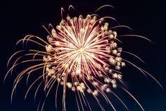 Fyrverkerier som brister i himlen på fjärde 4th Juli Arkivbild