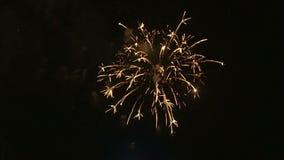 Fyrverkerier som exploderar i natthimlen lager videofilmer