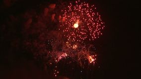 Fyrverkerier som exploderar i natthimlen stock video
