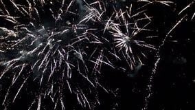 Fyrverkerier som exploderar i olika färger i den mörka natthimlen lager videofilmer
