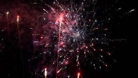 Fyrverkerier som exploderar i olika färger i den mörka natthimlen stock video