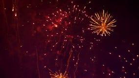 Fyrverkerier som exponerar i natthimlen långsam rörelse stock video