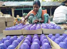 Fyrverkerier som gör i Indien Royaltyfri Fotografi