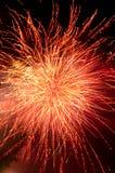 Fyrverkeriexplosion i rött och guld- Fotografering för Bildbyråer