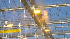 Fytolampen en bespuitend systeem op het plafond van de serre stock videobeelden