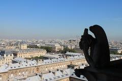 Gárgola de Notre Dame la París Imagen de archivo