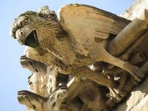 Gárgola del santo Siffrein, Carpentras, Provence, Francia de la catedral Imagen de archivo