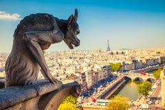 Gárgola en Notre Dame Cathedral Imagen de archivo