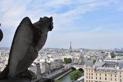 Gárgola que pasa por alto París, Francia Fotografía de archivo libre de regalías