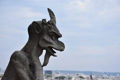 Gárgola que pasa por alto París, Francia Fotos de archivo