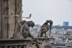 Gárgola que pasa por alto París, Francia imágenes de archivo libres de regalías