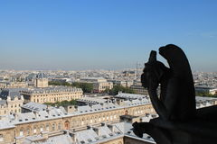 Gárgula de Notre Dame a Paris Imagem de Stock