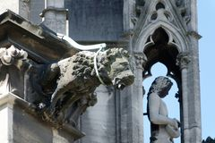 Gárgula na catedral da água de Colônia, Alemanha Imagens de Stock