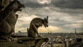 Gárgulas na catedral de Notre Dame de Paris que negligencia o Pa imagem de stock royalty free