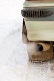 Gás de exaustão do carro Imagem de Stock Royalty Free