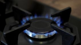 Gás natural ardente no queimador de gás vídeos de arquivo