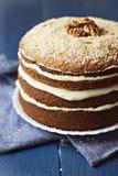 Gâteau à la carotte de noix Image stock