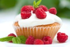Gâteau appétissant avec des framboises Photo libre de droits