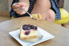 Gâteau au fromage avec des myrtilles image libre de droits