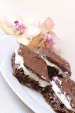 Gâteau au fromage avec du chocolat photographie stock