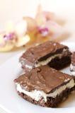 Gâteau au fromage avec du chocolat images stock