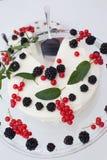 Gâteau au fromage avec les baies et la menthe photos stock
