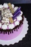 Gâteau au fromage crème rose avec des bonbons à chocolat Photographie stock libre de droits