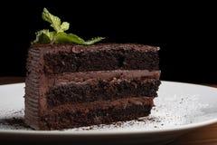Gâteau au fromage de chocolat avec la menthe Photo libre de droits