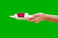 Gâteau au fromage de myrtille Image libre de droits