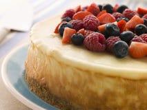 Gâteau au fromage de New York avec les baies mélangées Images stock