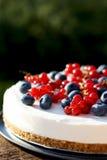 Gâteau au fromage de yaourt du 4 juillet de canneberge et de myrtille Image libre de droits