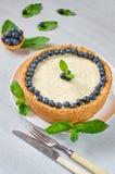 Gâteau au fromage fait maison avec les baies fraîches du plat blanc décoré des myrtilles, des feuilles en bon état, du couteau et photos libres de droits