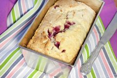 Gâteau au fromage fait maison de cottage avec des cerises Photographie stock