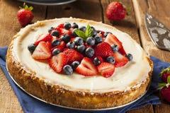 Gâteau au fromage fait maison de fraise et de myrtille images libres de droits