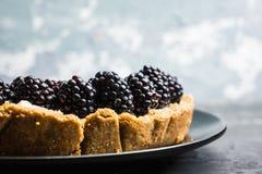 Gâteau au fromage frais de mûre sur le fond rustique images libres de droits