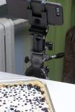 Gâteau au fromage sensible avec des myrtilles Image libre de droits
