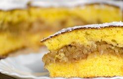 Gâteau aux pommes fait maison Photographie stock libre de droits
